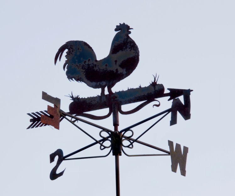 Weather Vane, New Forest